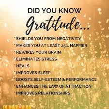 Image result for Quotes on gratitude